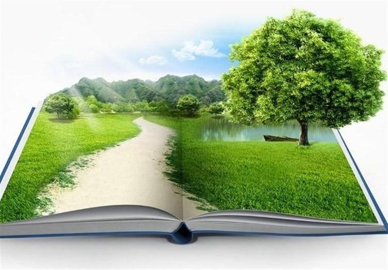 طبیعت قوانین جهان هستی